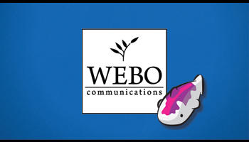 Webo Communications - Contact